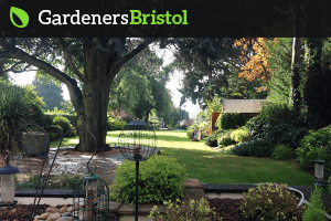 Reliable Bristol's Gardeners